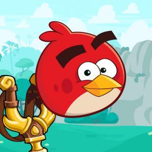 Crazy Birds - Friv Games